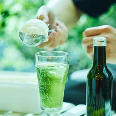心もとろける!究極のクリームソーダ/アイス研究家・シズリーナ荒井プロデュース「とろけあうクリソー」セット(6杯分)
